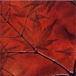 Japanese Maple Pattern